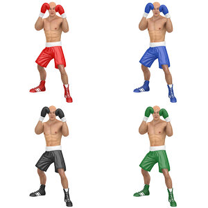 pack rigged boxer 3D