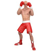 3D rigged boxer