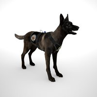 Belgian Malinois Dark Fawn-Combat Harness Low Poly