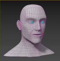 3D base human head model