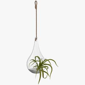 hanging terrarium 02 3D