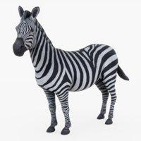 3D zebra rig