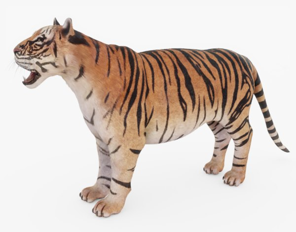 tiger fur 3D