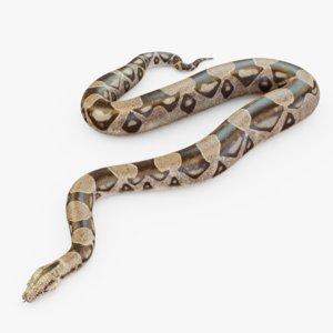 3D boa rig snake animation
