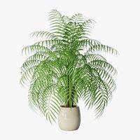 3D palm pot model