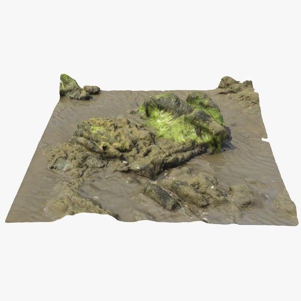 seaweed rock 3D