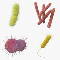 bacteria pack 3D model
