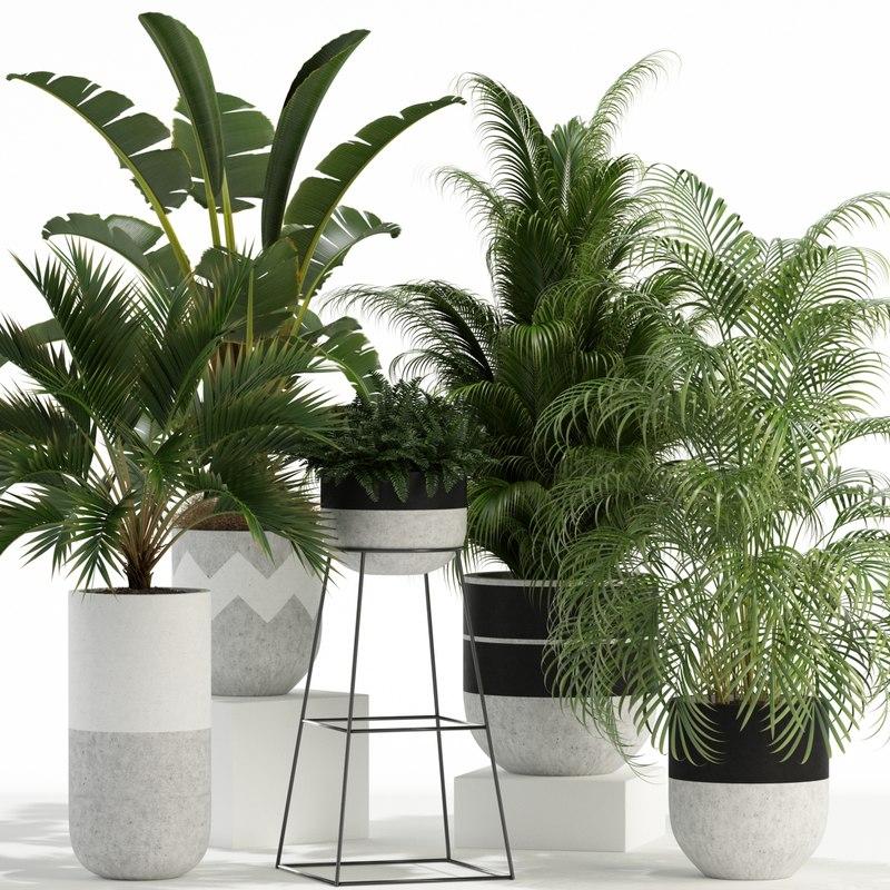 plants 110 3D