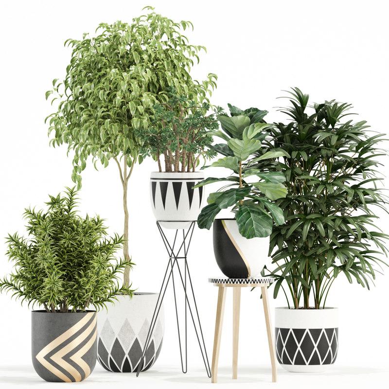3D plants 112 model