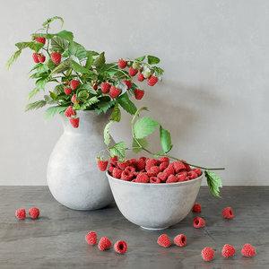 3D raspberries bouquet