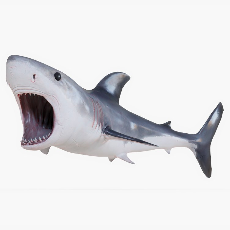 great white shark animations 3D model