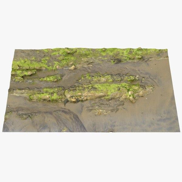 seaweed rock 3D model