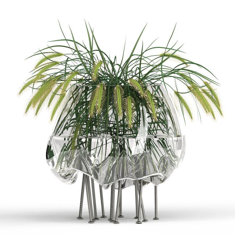 3D realistic grass pennisetum