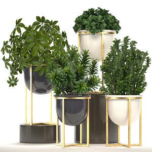 plants pots 3D model