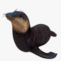 3D realistic sea lion model