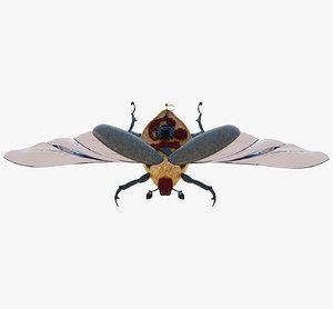 souvenir beetle 3D model