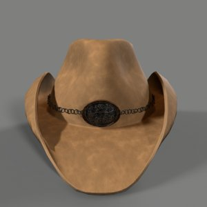 3D cowgirl hat