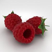 raspberry berry 3D
