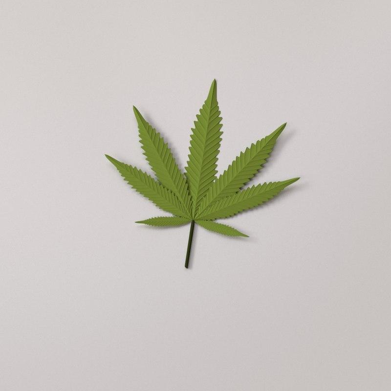 cannabis leaf 3D