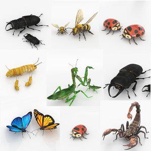 bugs butterfly scorpion model