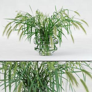 realistic northern sea oats 3D model