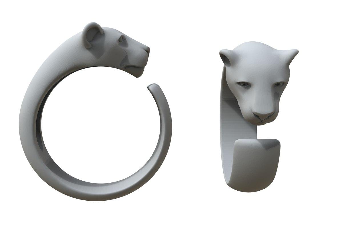 3D ring cat family model