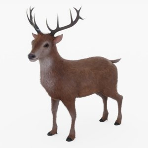 3D model rigged reindeer