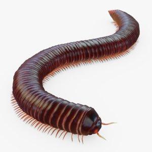 3D model milipede rig