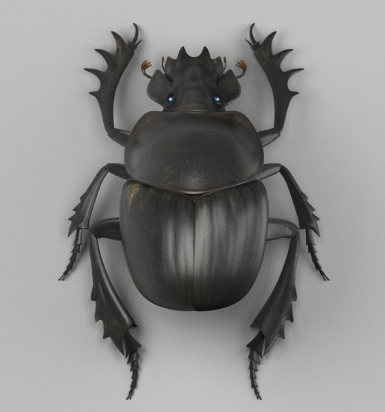 3D dung beetle model