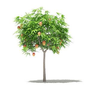 3D mango tree fruits 1