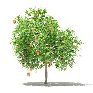 3D mango tree fruits 2