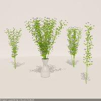 3D ristoretto - flower miniflowers