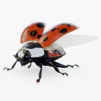 3D ladybug rig