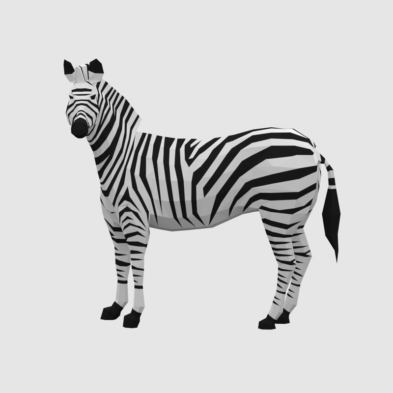 zebra animal 3D