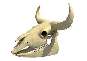 bison skull model