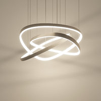 Hanging Design Loop Lamp Delta