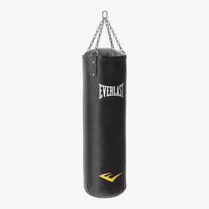 3D everlast punching bag model