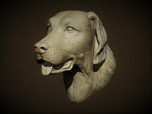 retrievers dog head model