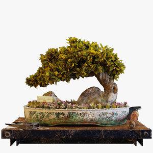 bonsai interior shrubs 3D model