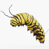 caterpillar rigged 3D model