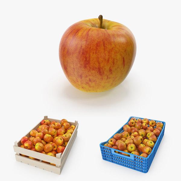 apple gala royal 3D model