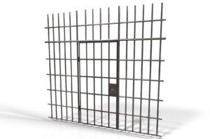 3D cell door