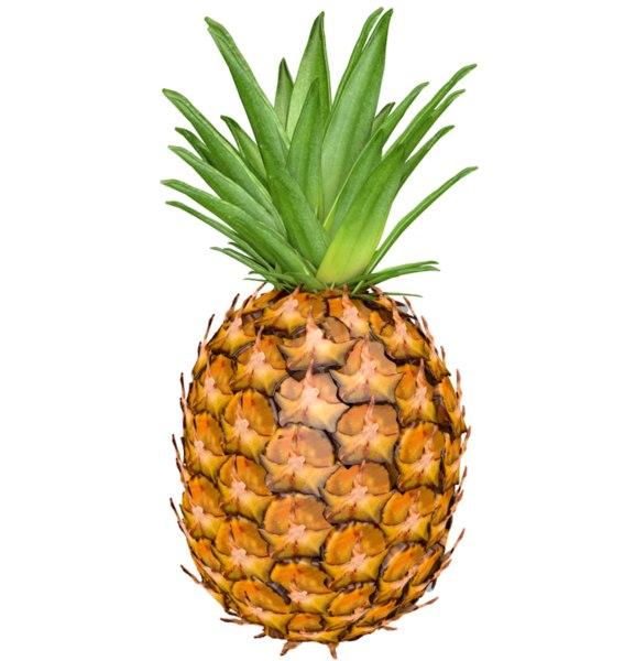 3D model pineapple fruit pine apple