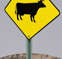 3D road sign cow