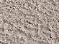Beach Sand Scan