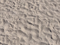 beach sand scan model