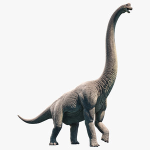 brachiosaurus animation model
