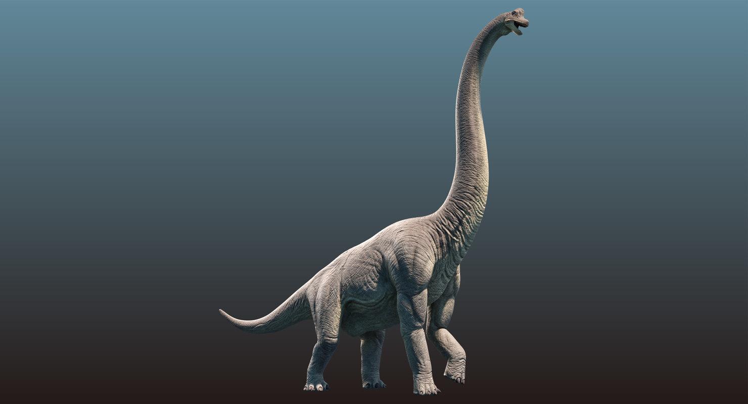 brachiosaurus animation model