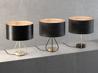 ed029 table lamp 3D