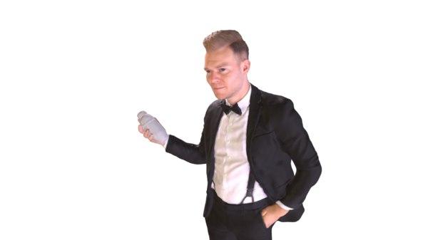 bartender shaker 3D model